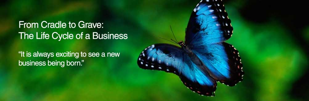 Read more about the article From Cradle To Grave: The Life Cycle of a Business